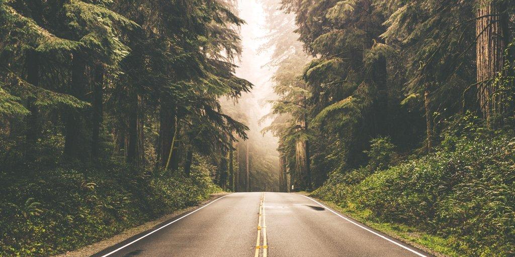 Kjenner du veien til Gud?